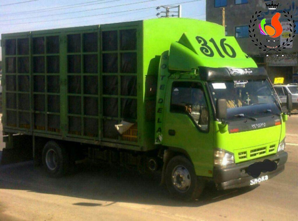 کامیون مخصوص حمل نیمچه و مرغ تخمگذار شرکت طیوران صنعت سید