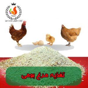 تغذیه مرغ بومی