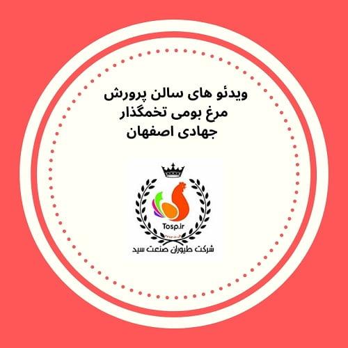 مرغ جهادی اصفهان